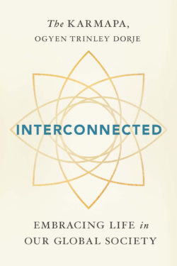 Interconnected (Paperback)
