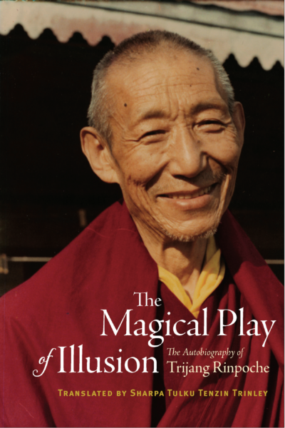 The Magical Play of Illusion – Print