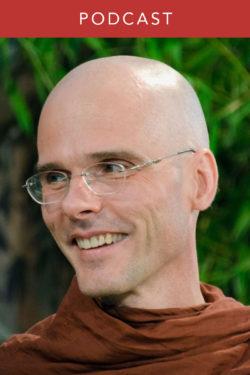 Bhikkhu Anālayo: The Satipatthana Sutta