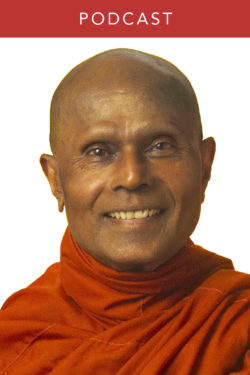 Bhante Gunaratana: A Special Teaching on Mindfulness