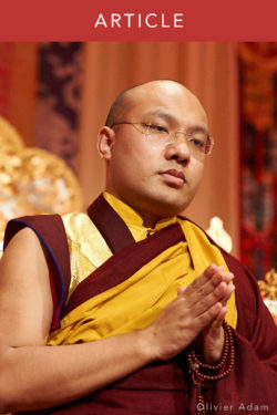 The 17th Karmapa on How to Use Technology Wisely