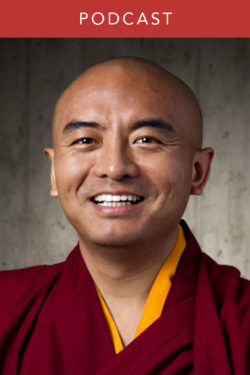 Mingyur Rinpoche: Stories of Wandering and Awakening