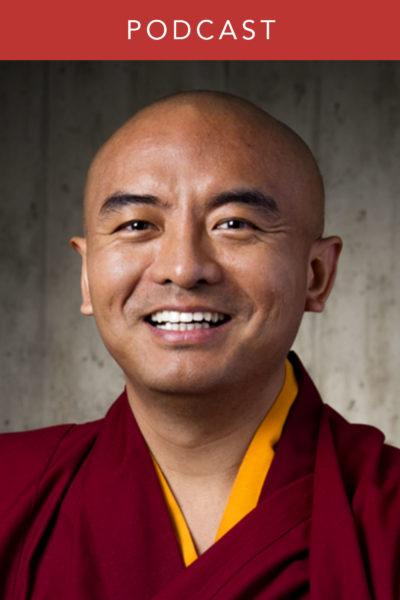 Mingyur Rinpoche: Stories of Wandering and Awakening