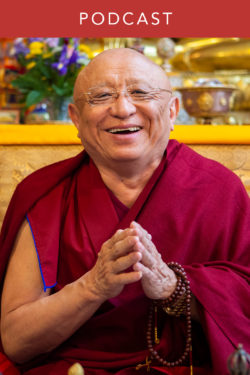Chokyi Nyima Rinpoche: Prioritizing Aspirations Along the Path