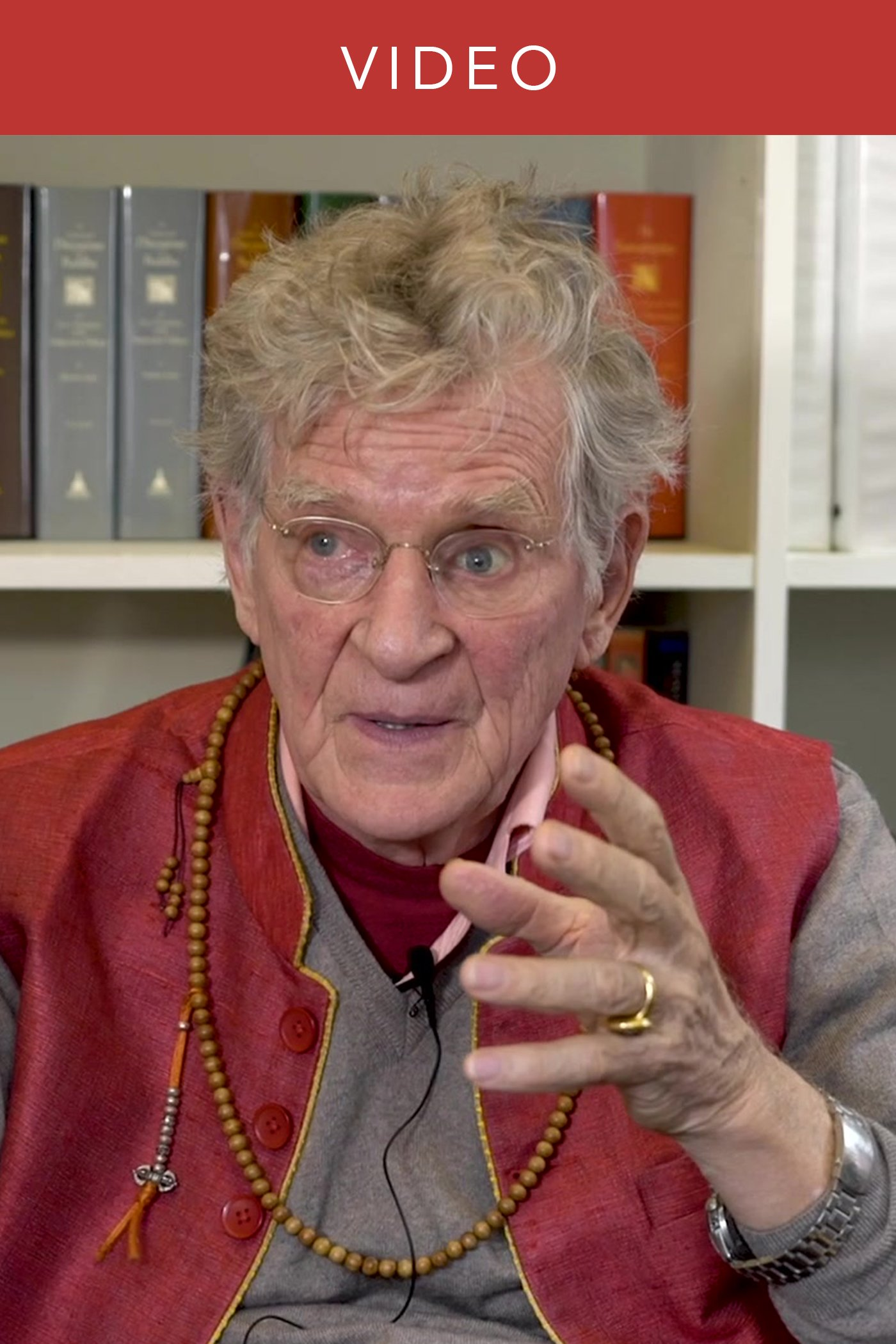 Robert Thurman on Meditative Experience and Critical Insight
