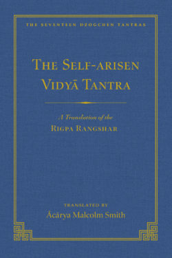 Self-Arisen Vidya Tantra (vol 1) ebook