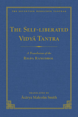 Self-Liberated Vidya Tantra (vol 2) ebook