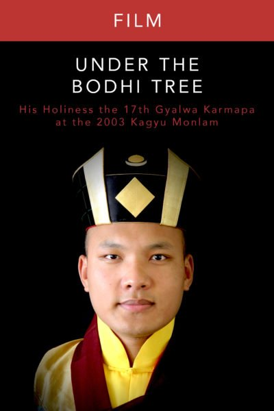 Under the Bodhi Tree