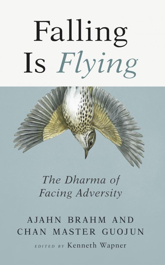 Falling is Flying book cover