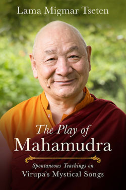 The Play of Mahamudra