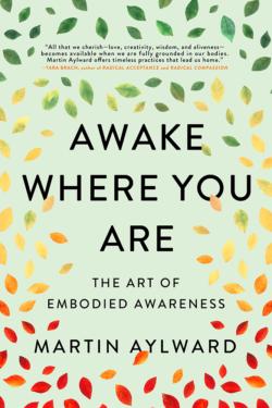 Awake Where You Are