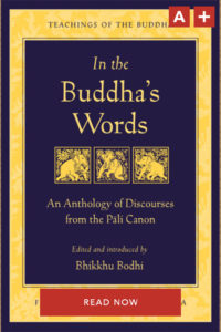 wisdom-publications-tibetan-buddhism-in-the-buddhas-words-newsletter-a